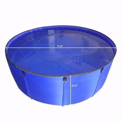 Portable Koi Show Tank